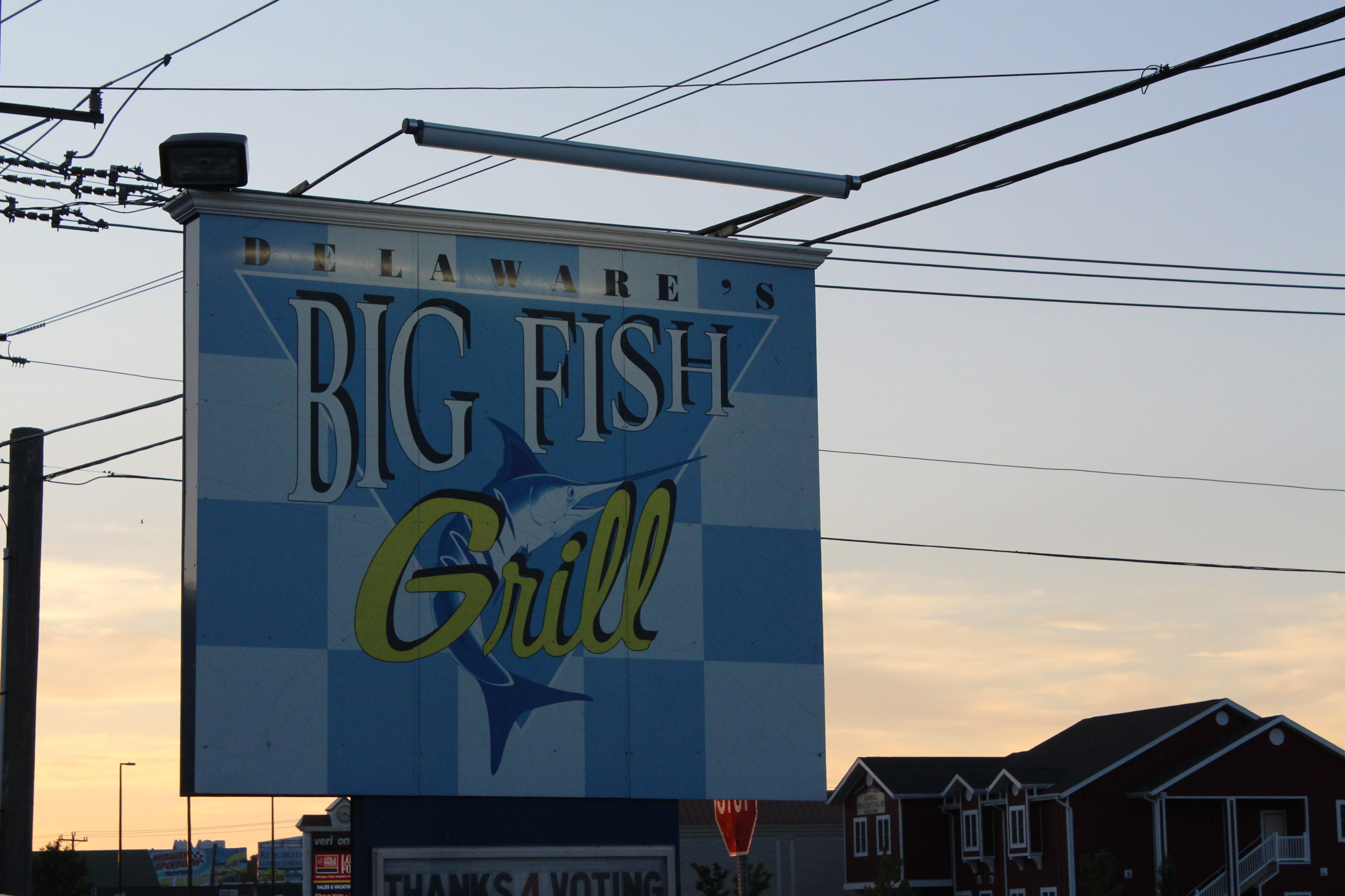 Dinner at big fish grill rehoboth beach delaware the for Big fish restaurant